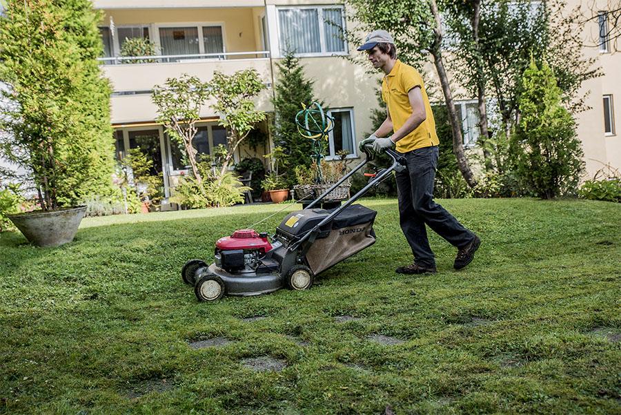 Gepflegter Rasen im Abo